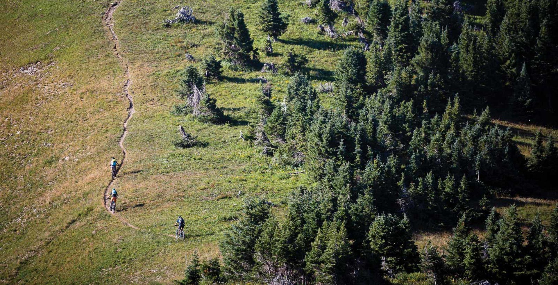 The fall colors may be easy on the eyes, but at nearly 12,000 feet, the altitude is brutal on the lungs. The group coasts along the Indian Ridge section of the Colorado Trail, stocking up on breath for the numerous 12,000-foot punchy climbs ahead.