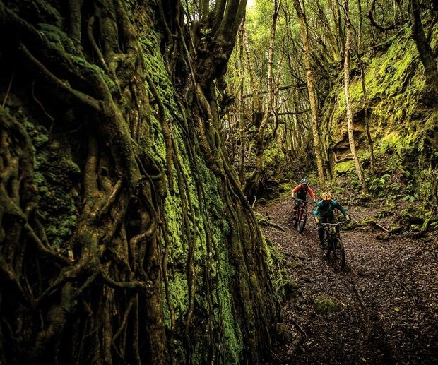 Steep, deep and untracked—the fertile volcanic soil of the Azores also happens to make for some ultra-loamy trail conditions. Guide and purveyor of the local bike scene, Carlos Dos Santos, leads the author through a chute while touring the trail offerings for his planned Trans-Atlantis enduro race.