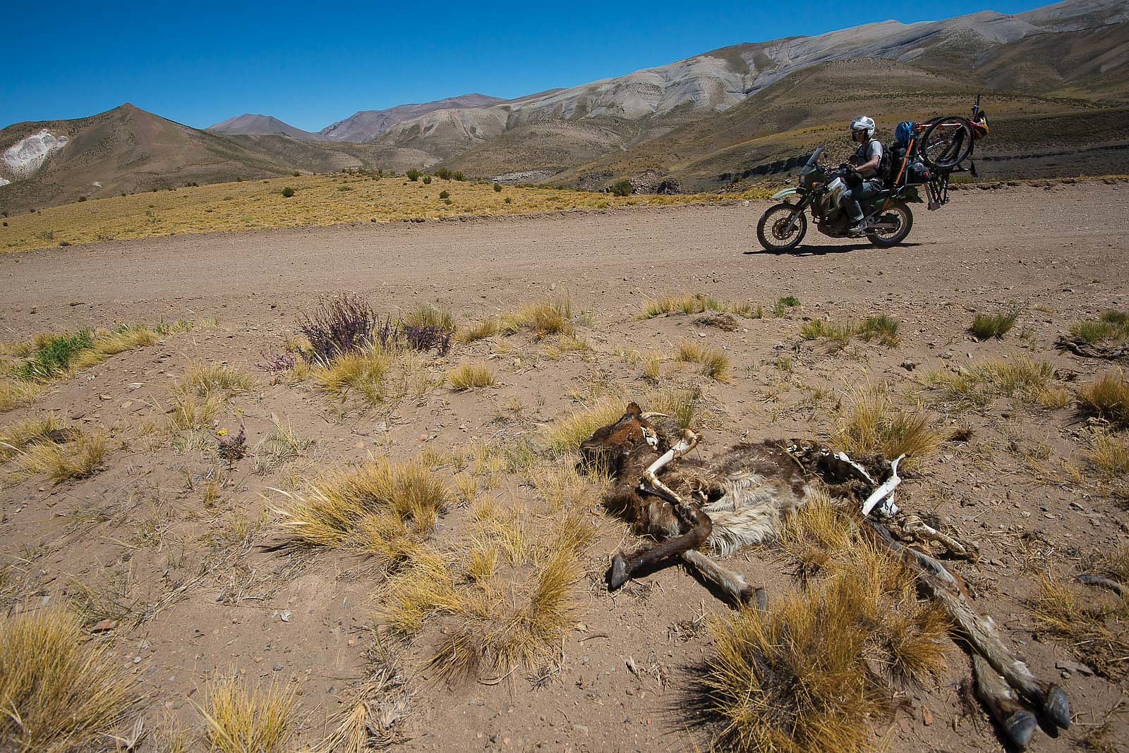 No Mad S Land Argentina By Bike With Mike Kinrade And John