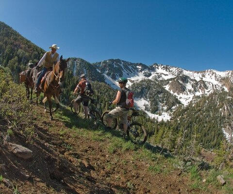 The yearly trail-work weekend at Mile Creek represents an unusual and long-standing partnership between horsepackers and cyclists, one that has created some of the best trails in the state. Clark Kinney hauls tools with packstock, while Tim Hokanson and Corey Biggers pedal (and push) towards snowline during the Summer of 2009.