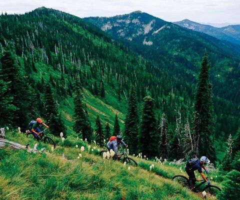 Jason Keen, Tyler Gustafson and Ross McCann blast through bear grass on the Beetop-Roundtop Trail in northern Idaho.