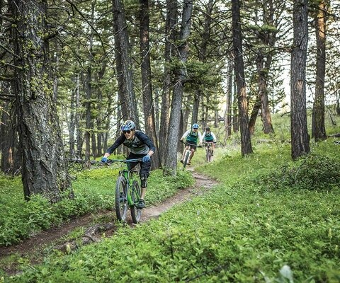 After conquering the climb on the Mount helena Ridge Trail, Keenan Cox, Dan Barry and Brian Elliott drop into a mellow flowy descent through the pines. Keep your eyes up, though; a few steep and loose sections await farther down. CANON 1/1000 sec, f/3.2, ISO 1600