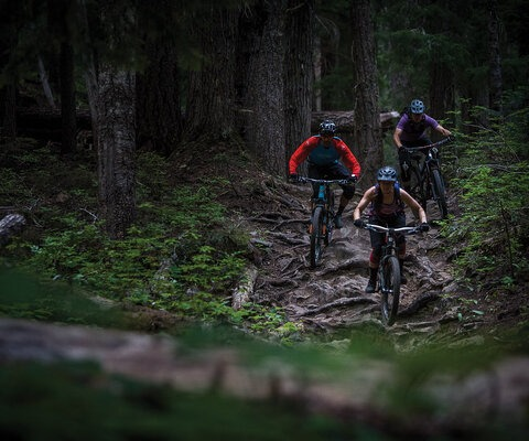 While huge, wet roots and dark woods may not sound like an enjoyable experience, it's a classic Washington style that most Pacific Northwesterners—homegrown or transplanted—have come to love. Ruby Morrissey, Anthony Boussetta and Blaise Ratcliffe find the many possible lines on the bottom of Kachess. SONY, 1/320 sec, f/2.8, ISO 2500